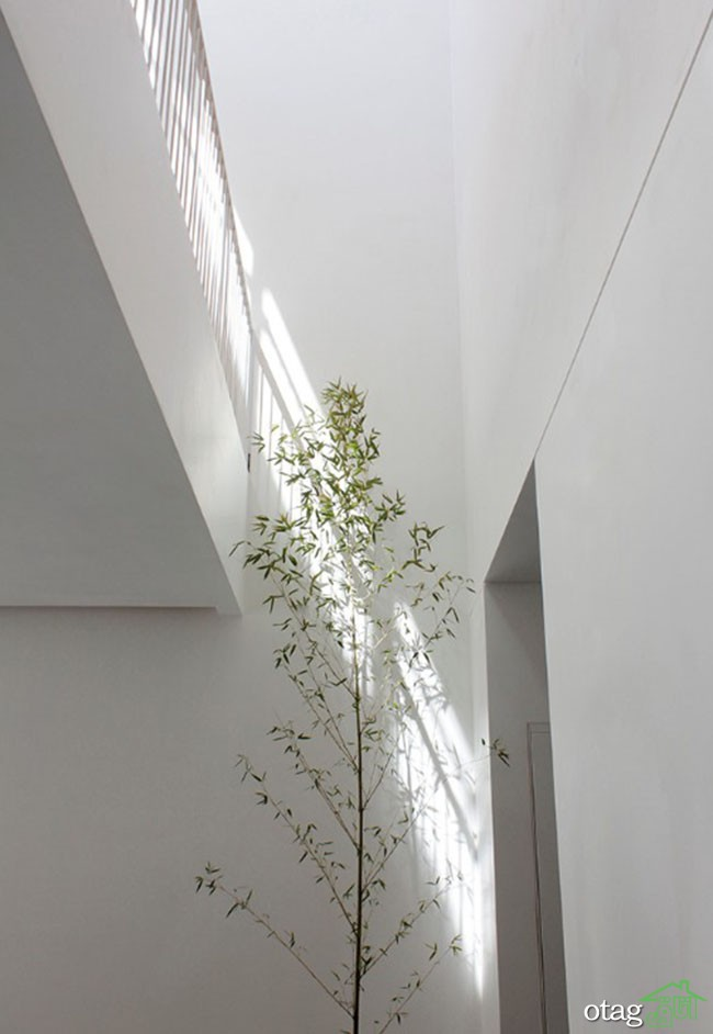 نمای-بیرونی-ساختمان-سه-طبقه (16)