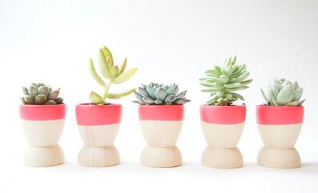 مدل های جدید گلدان چوبی فانتزی مناسب برای هر نوع گیاهی