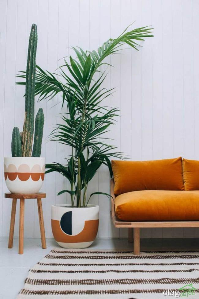 گیاهان-آپارتمانی-مقاوم (25)