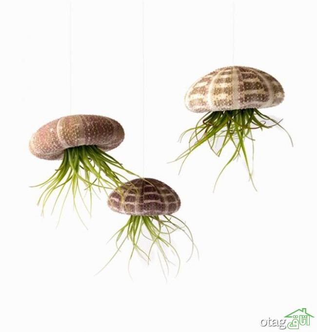 گیاهان-آپارتمانی-مقاوم (31)