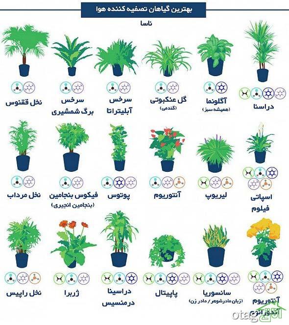 ابزار باغبانی خانگی 4 تکه