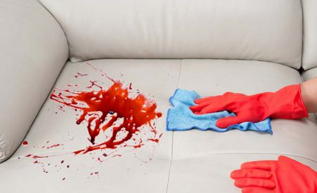 5 مرحله ی کلیدی که باید درباره شستشوی مبل بدانید!