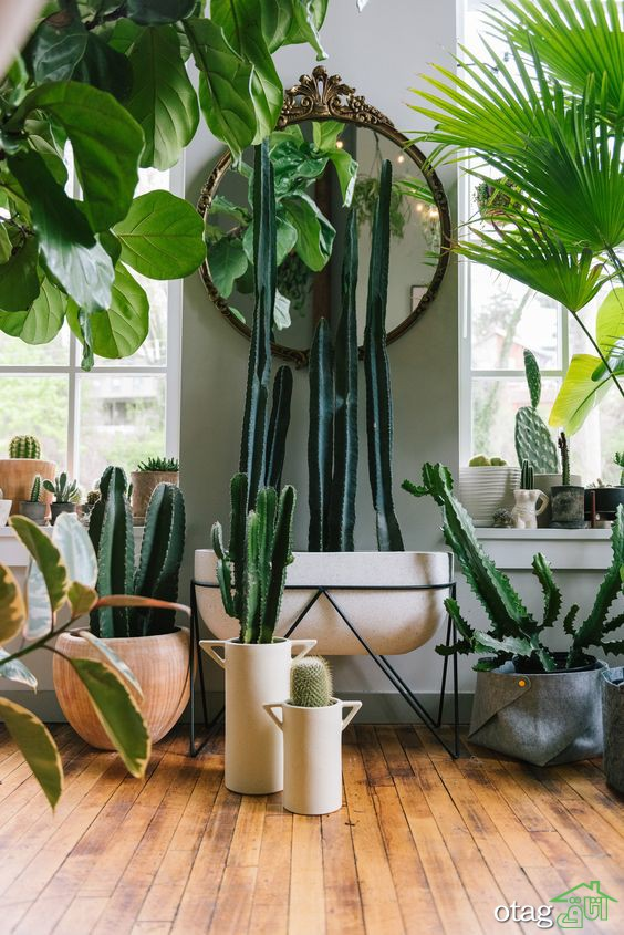 راهنمای ایجاد فضای ذن در هر نقطه از خانه شما
