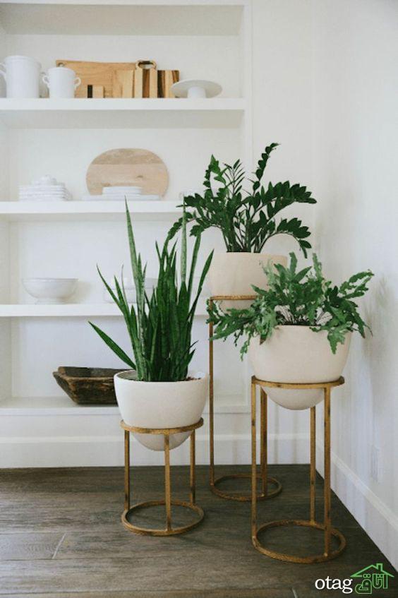 راهنمایی و بررسی ایده های تزیین خانه با گل طبیعی