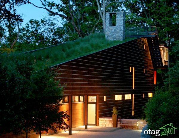 پشت بام سبز؛ یک رویای سبز بر بالای ساختمان