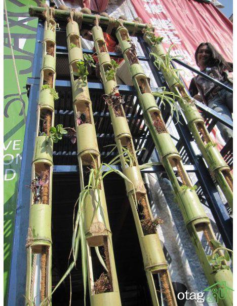 معرفی داربست گیاهکاری و 6 روش ساخت راهبردی
