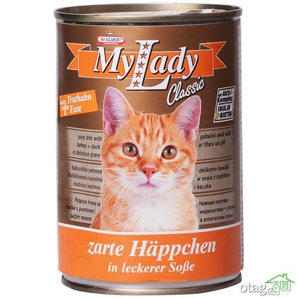 لیست خرید 41 مدل غذای گربه کنسروی و غذای خشک + قیمت
