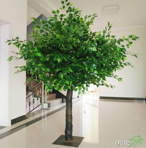 مدل های شیک درختچه مصنوعی جدید مناسب منازل و محیط های اداری