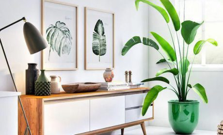 طراحی داخلی مینیمالیستی و نحوه کار با آن در سال 2020