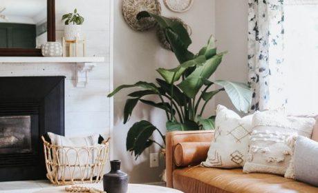 ایده های رنگ تاپه برای دکوراسیون بخش های مختلف خانه