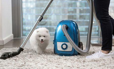 راهنمای نگهداری از فرش