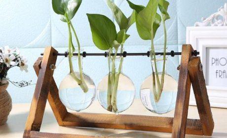 گلدان شیشه ای جدید و زیبا مخصوص تغییر دکوراسیون خانه