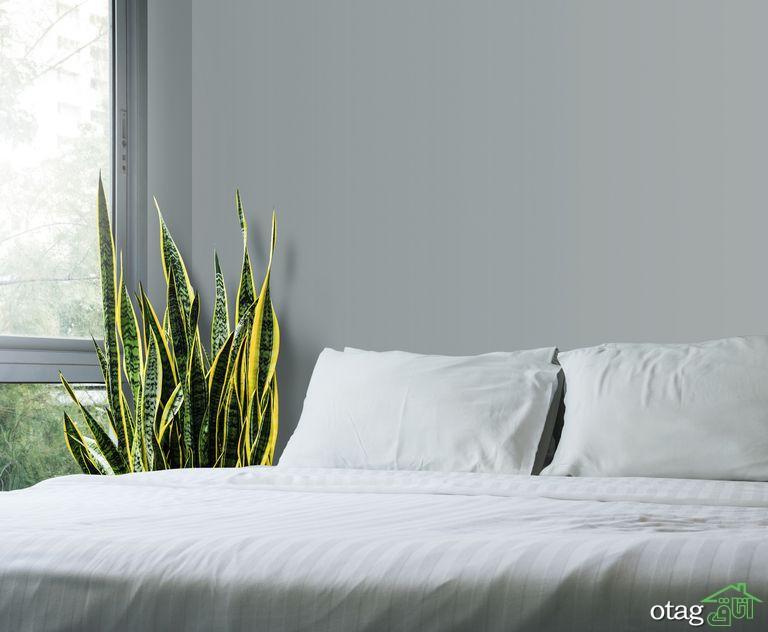 فنگ شویی در اتاق خواب، بررسی نکات تاثیرگذار بر خواب شبانه