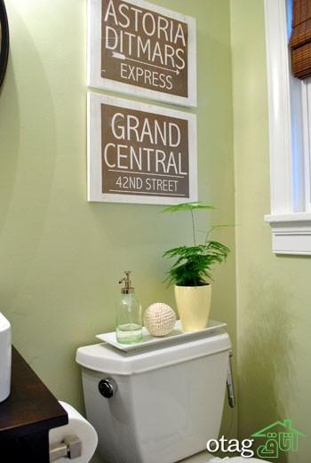 گیاهان مناسب حمام و دستشویی برای تزیین و زیباسازی دکور