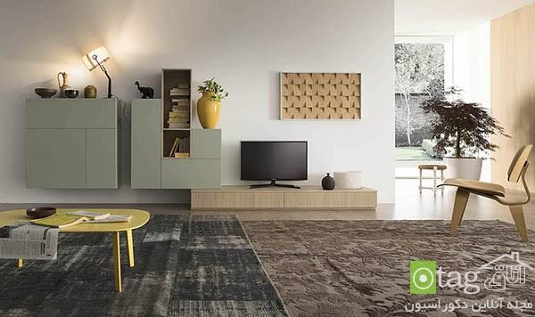 Adaptable-living-room-wall-units-desisgn-ideas (14)