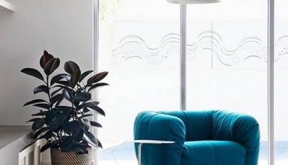 آشنایی با 10 گیاه زیبای آپارتمانی برای تصفیه هوای خانه