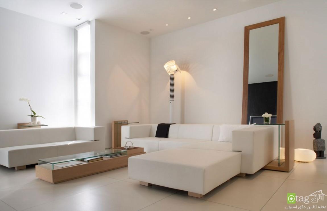 Amazing-Decorative-Mirrors-Design-ideasjpg (10)