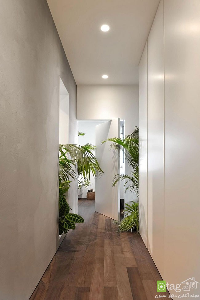 Apartment-interior-filled-with-natural-greenery (5)