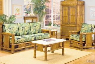 طراحی دکوراسیون منزل با گیاه بامبو / تصاویر