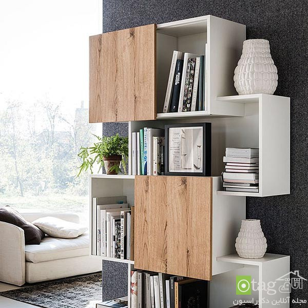 Beautiful-contemporary-bookshelf-design-ideas (11)