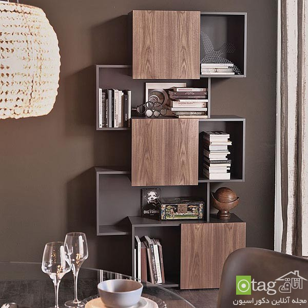 Beautiful-contemporary-bookshelf-design-ideas (15)
