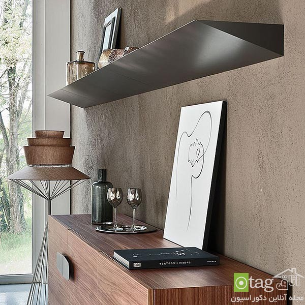 Beautiful-contemporary-bookshelf-design-ideas (3)