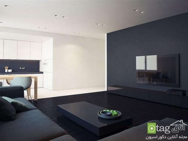 Beautiful-visual-contrast-in-apartment-interior (18)