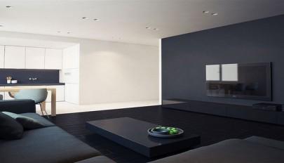 نمونه ای بسیار زیبا از تضاد در دکوراسیون داخلی آپارتمان