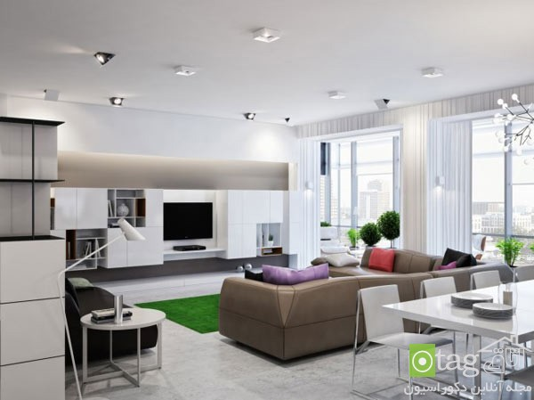 Chic-decoration-in-modern-apartment (2)