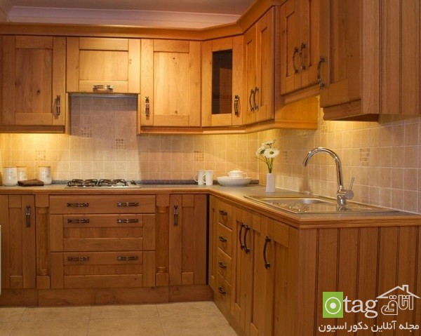 Classic-Wood-Cabinets-in-Kitchen-Ideas (8)