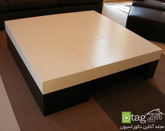 Coffee_Table_designs (8)
