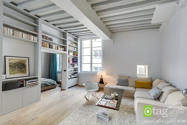 Compact-and-cozy-apartment-decoration-design (5)