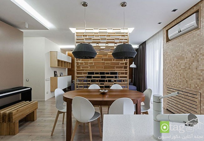 Ingenious-modern-apartment-with-wooden-partition (2)