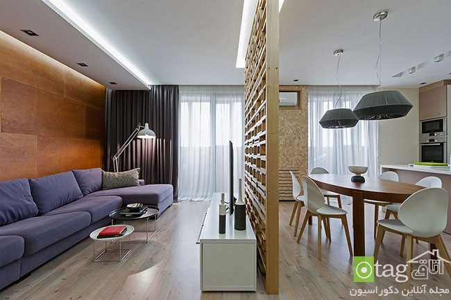 Ingenious-modern-apartment-with-wooden-partition (3)