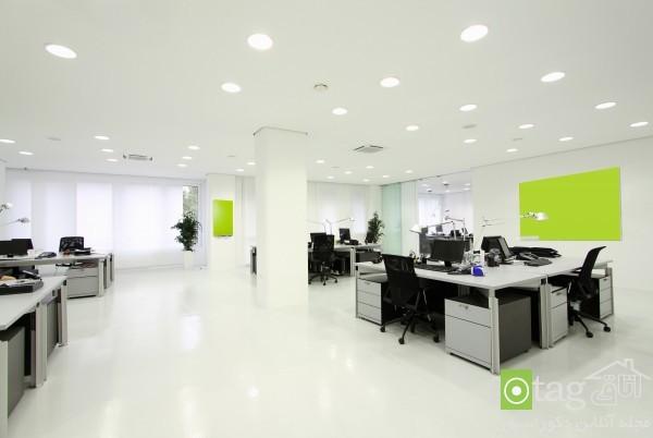 Interior_Office_Design-ideas (5)