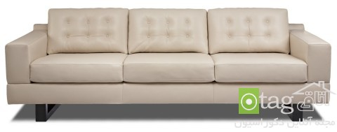 Leather-Couch-design-ideas (1)