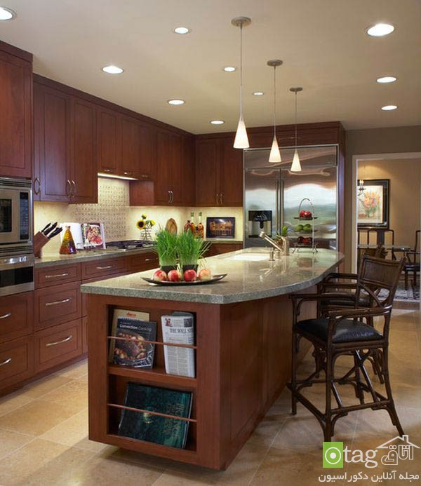 Modern-kitchen-designs-for-coocking-enthusiast (13)