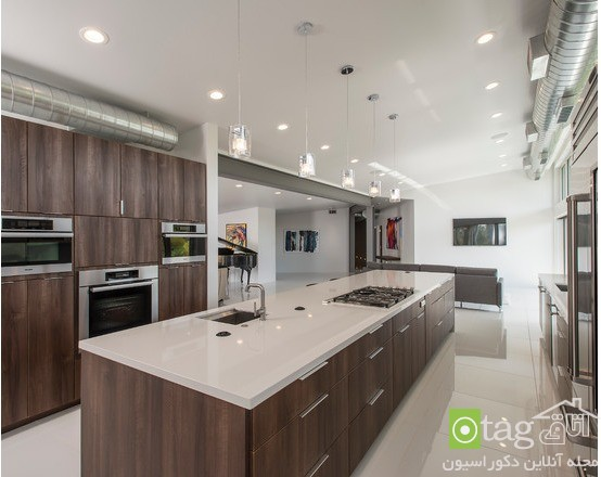 Modern-kitchen-designs-for-coocking-enthusiast (3)