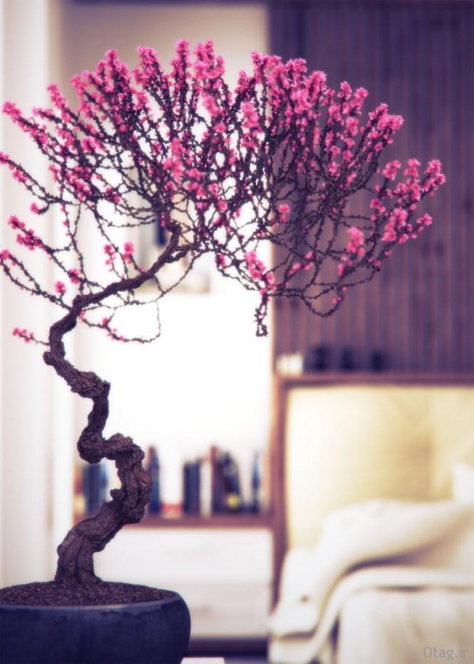 Pink-bonsai-tree-665x931