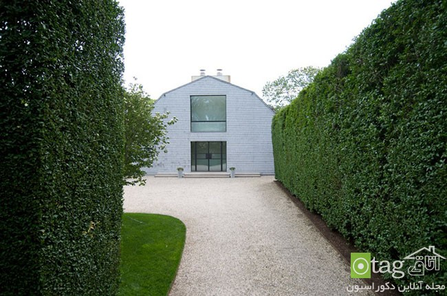 Privacy-hedge-created-by-plants (11)