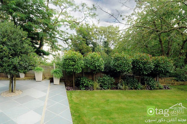 Privacy-hedge-created-by-plants (16)