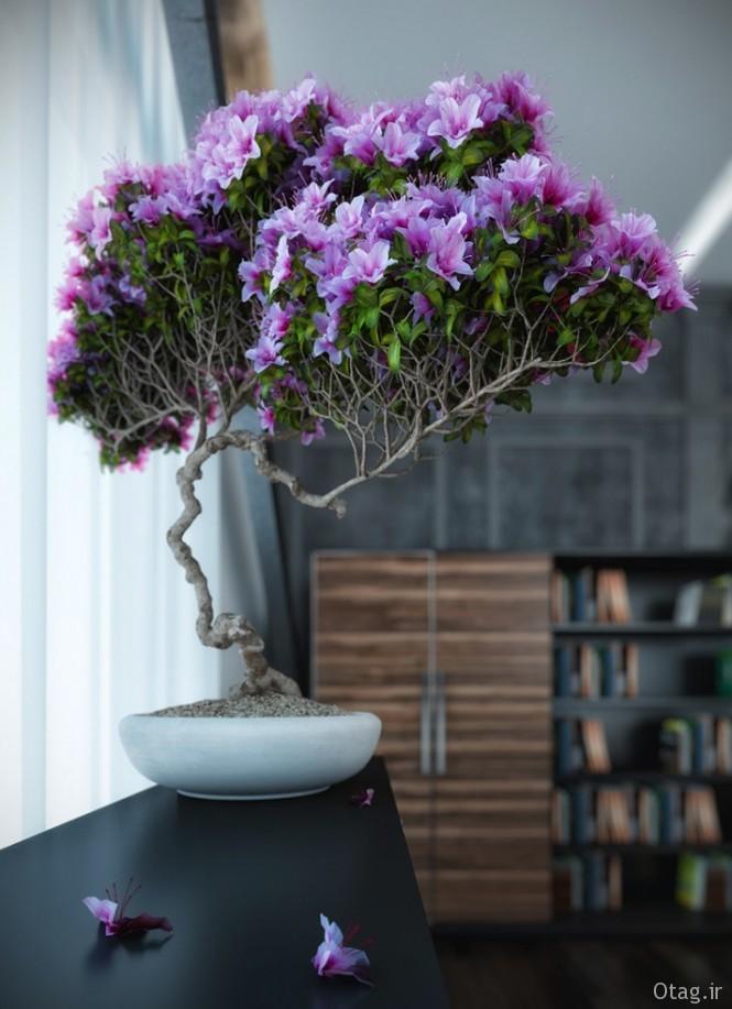 Purple-bonsai-tree-665x917