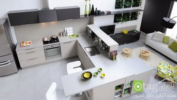 Stylish-Kitchen-Designs (1)