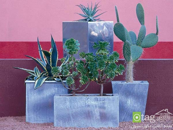Tropical-plants-in-patio-and-yard-decoration (8)