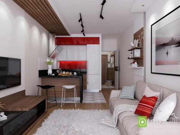 apartment-floor-plan-under-30-square-meters (13)