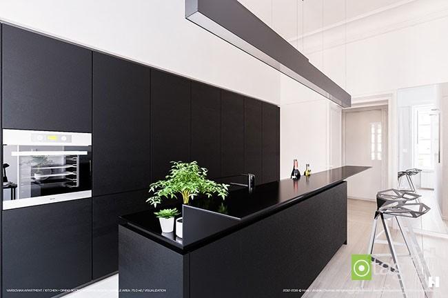 black-and-white-interior-theme-ideas (1)