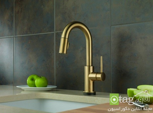 brass-kitchen-faucets-designs (5)