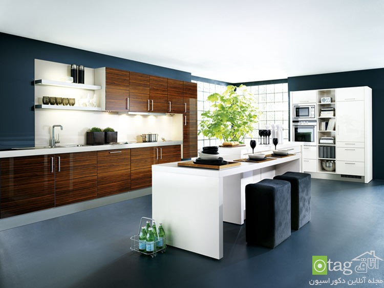 creative-kitchen-cabinets-modern-design-modern-kitchen-cabinets (2)