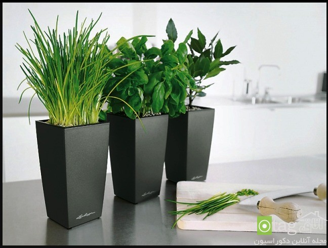 decorative-flower-pot-design-ideas (5)