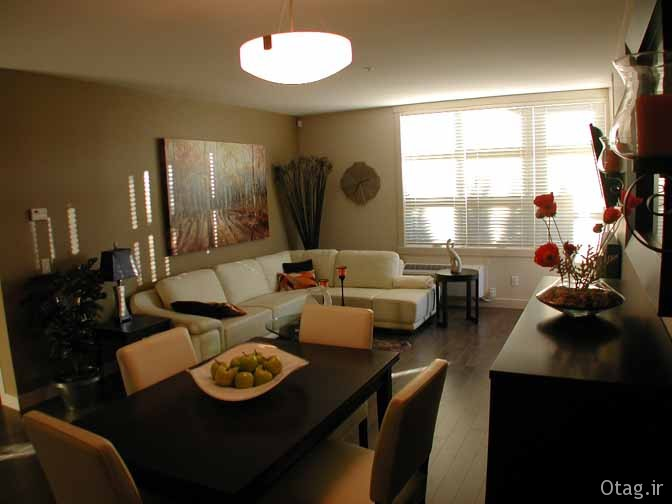 dining-living-room (7)